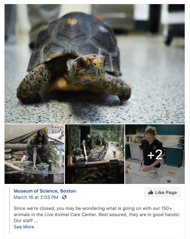 Link to Museum of Science FB post.